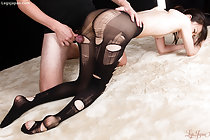 On all fours wearing torn pantyhose many rubbing his cock against her